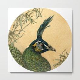 Green Peafowl Head Metal Print