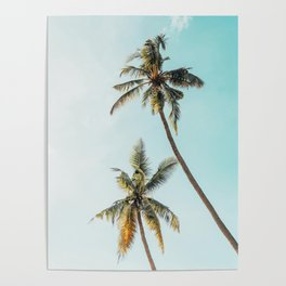 Palm Tree Beach Summer Poster