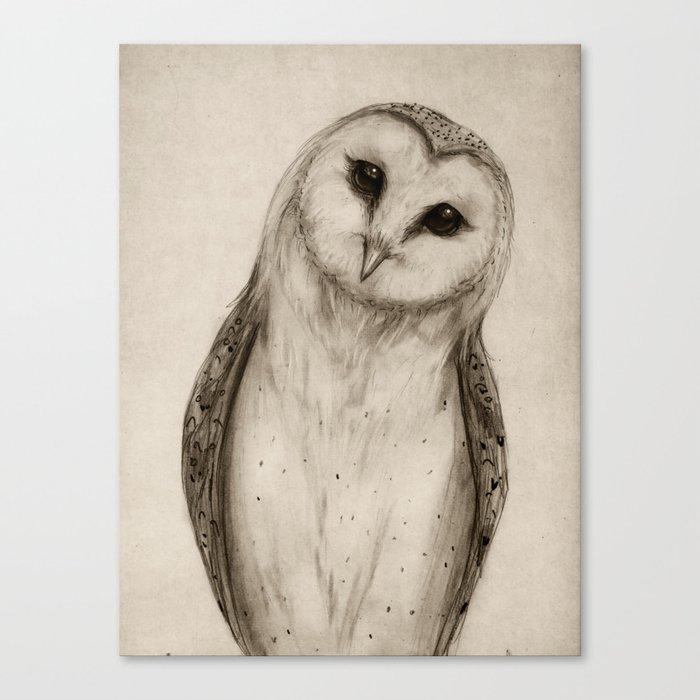 Barn Owl Sketch Canvas Print