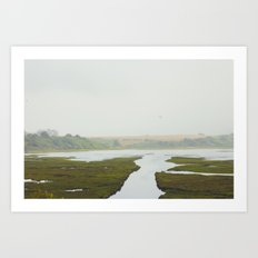 Marin Art Print