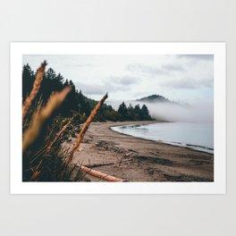 Foggy Washington coast morning Art Print