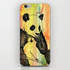 Panda Trip iPhone & iPod Skin