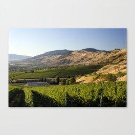 Okanagan Valley Winery Vineyard Landscape Canvas Print