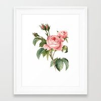 botanical Framed Art Prints featuring Botanical by Goga Alexandra