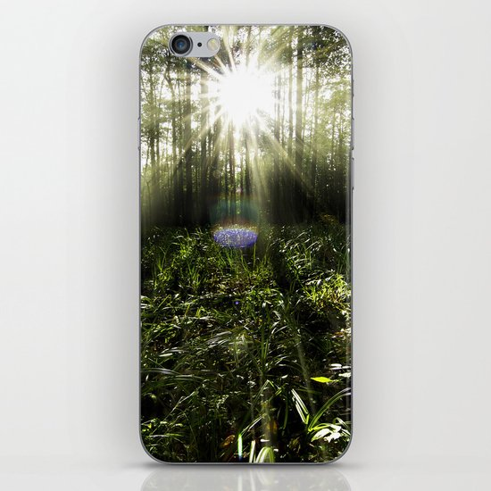 Sunrays iPhone & iPod Skin