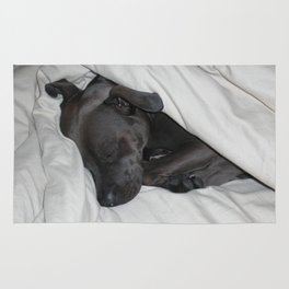sleeping bully Rug