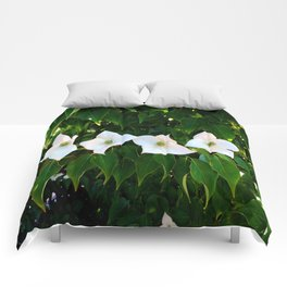 Four of a kind Comforters