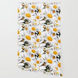 Daisy Flowers 0136 Wallpaper