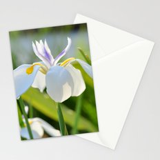 Gleamin' Iris Stationery Cards