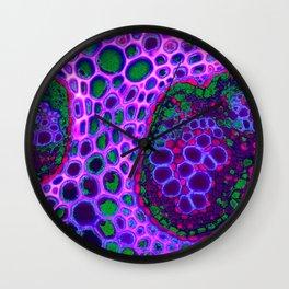 cellulose bubbles Wall Clock