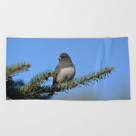 Backyard Beauty Beach Towel