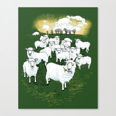 Hide & Sheep Canvas Print