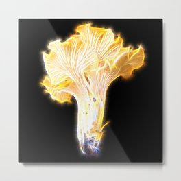 Magic Chanterelle Metal Print