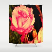 rare Shower Curtains featuring Rare Rose  by Ambers Vintage Find