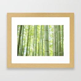 bamboo forest - Kyoto, Japan Framed Art Print