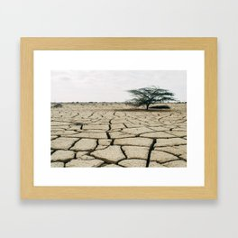 Dry Land Framed Art Print