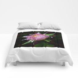 Bodega Bay Comforters