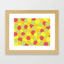 Summer fruits Framed Art Print