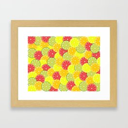 Summer fruits Framed Art Print