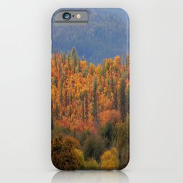 Fall colors huddled together.... iPhone Case