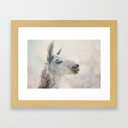 Alpaca in Machu Picchu Framed Art Print
