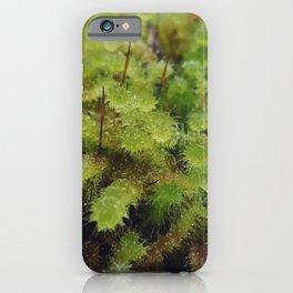 Green moss iPhone Case