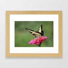 Bokehs and Butterflies Framed Art Print