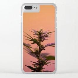 Macro cannabis kush photo Clear iPhone Case