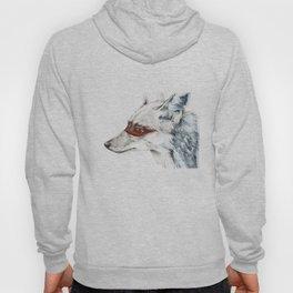 Coyote I Hoody