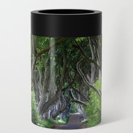 Dark Hedges, Northern Ireland. Can Cooler