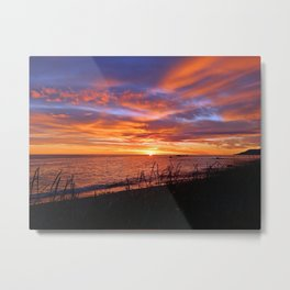 Breaking the Surface Metal Print