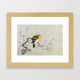Kano Tsunenobu Bird on a Flowering Branch Framed Art Print