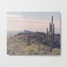 Desert Escape Metal Print