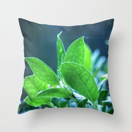 New Day of Spring Throw Pillow