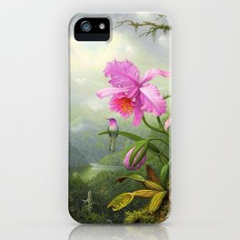 Hummingbird Perched On The Orchid Plant - Martin Johnson Heade iPhone Case