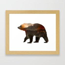 Jack's Bear Framed Art Print