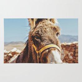 Donkey photo Rug