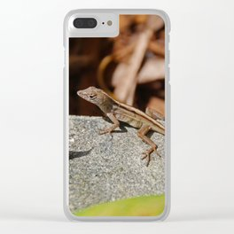 A Hush in the Afternoon Clear iPhone Case