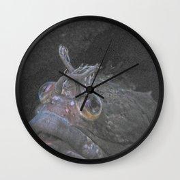 fringehead Wall Clock