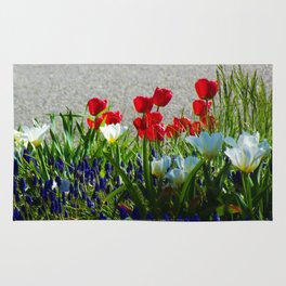"Red, White and Blue Flowers ""America in Bloom""  Jeronimo Rubio Photography 2016 Rug"