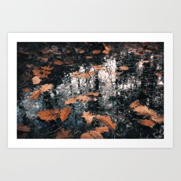 HDR daylight autumnous puddle with floating leaves Art Print