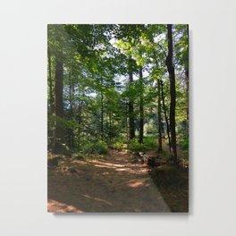 Serene Woodlands Metal Print