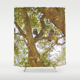 Incense tree with pigeons Shower Curtain