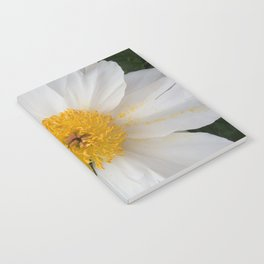 White Beauty by Teresa Thompson Notebook