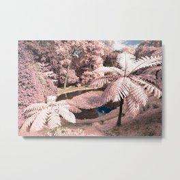 Tree ferns Metal Print