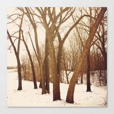 Resting Trees Canvas Print