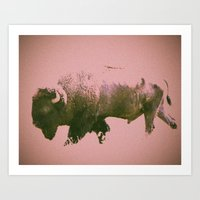 bison Art Prints featuring Bison by Phil Flaig