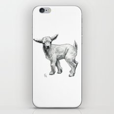 Little Goat Baby  SK134 iPhone & iPod Skin
