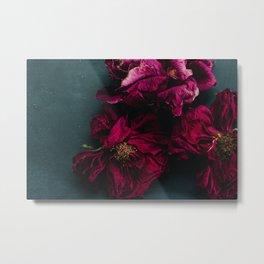 Floral Study II Metal Print