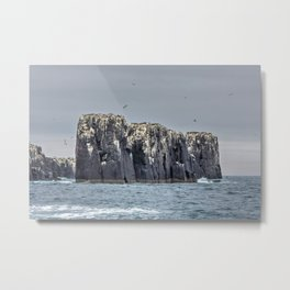 The Farne Island cliffs Metal Print